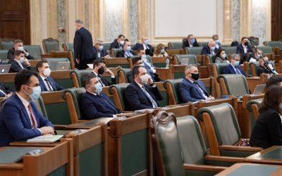 Profesionalizarea CNA şi corectarea legii spaţiilor verzi – cele mai importante  puncte din agenda parlamentară a acestei săptămâni
