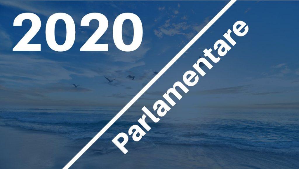 2) 2020: Campanie alegeri parlamentare